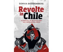"Sophia Boddenberg ""Revolte in Chile"""